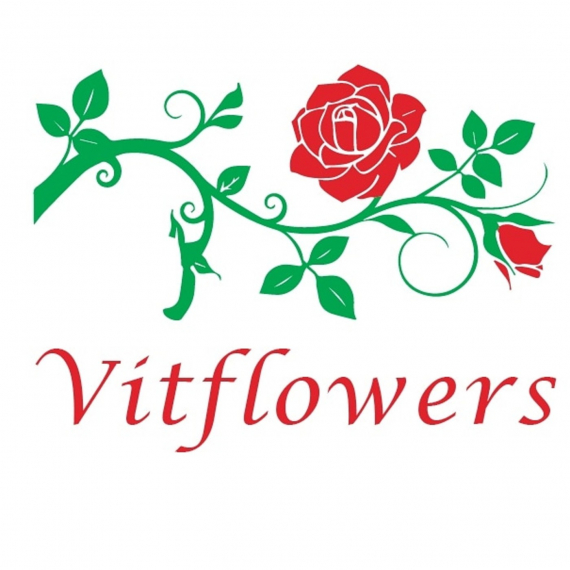 Vitflowers