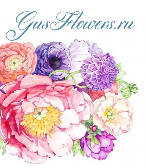 GusFlowers.ru